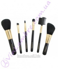 Set of 6 brushes for make-up in case