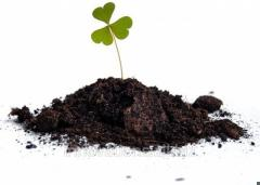 Innovation: Mix for recultivation and a