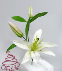 Decor elements for cake - flowers 'Sugar lily'