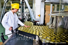 Pass plants for production of fruit puree
