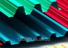 Professional flooring galvanized (RAL) S-8, S-10,