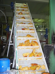 The conveyor equipment on lines of processing of