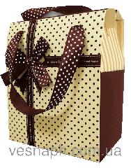 Gift cardboard handbag