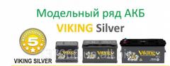 Battery Viking Silver