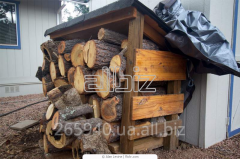Firewood of strong breeds