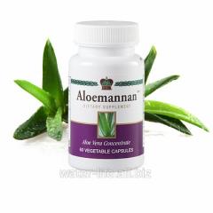 Additive to food Aloemannan. Aloemannan