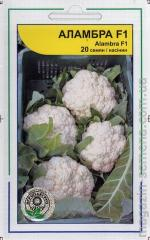 Cabbage color Alambra F1 (20 seeds)