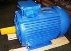Common industrial electric motors