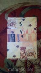 Blanket cover 100*150 coarse calic