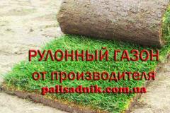 Рулонний газон ціна торішня, газон купити