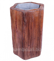 "Ballot box of ""Pulizia"