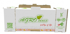 Corrugated cardboard box for packing of berries,