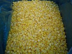 The corn frozen