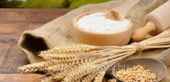Wheat flour according to GSTU 46.004-99