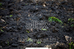 Soil on adding, delivery