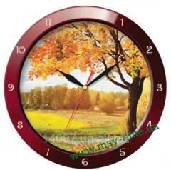 Wall clock of 11131148 Troyka