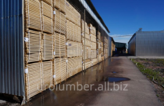 Timber, Forest products