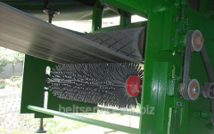 Brush for cleaning of conveyer belts