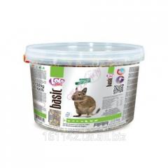 Корм для дегу 2 кг Lolo Pets