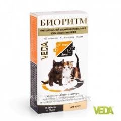 Витамины Биоритм для котят 48 таб Veda