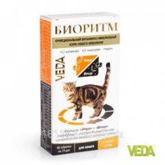 Витамины Биоритм для кошек с печенью 48 таб Veda
