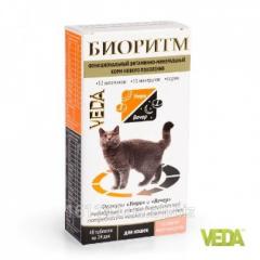 Витамины Биоритм для кошек с рыбой 48 таб Veda