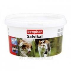 Витамины Салвикал 250 г Beaphar Salvikal