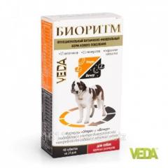 Витамины Биоритм для собак крупных пород 48 таб Veda