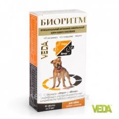 Витамины Биоритм для собак средних пород 48 таб Veda