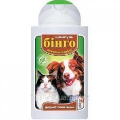 Шампунь для кошек и собак дерматологический 200 мл Бинго