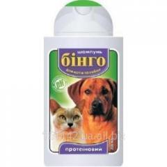 Шампунь для кошек и собак протеиновый 100 мл Бинго