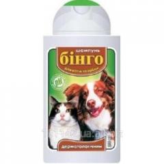Шампунь для кошек и собак дерматологический 100 мл Бинго