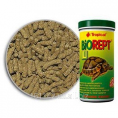 The main forage for overland turtles of 100 ml of