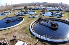 Инновация: Водоочистная фито-синергетическая...