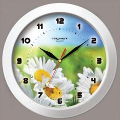 Wall clock 51510532 camomiles