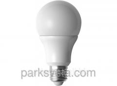 Bulb 061-N A65 12W
