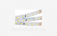 Лента RT 2-5000 24V 1.6X WHITE - 2835, 490 LED,