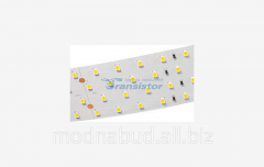 LED tape RT 2-2500 24V WARM 4X2 - 2835,700 LED,