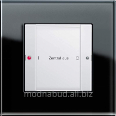 Central switch