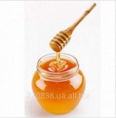 Honey z r_znotrav'ya