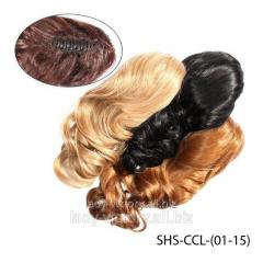 Chignons on SHS-CCL-(01-15) hairpins