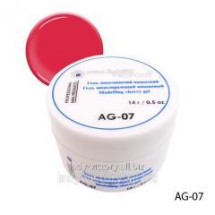 The gels modeling code: AG-(07, 09, 13, 15-18)