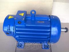 Crane MTH, MTF, MTM, MTKH, MTKF electric motor