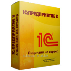 1C:Enterprise 8.2. License for the server (x86-64)