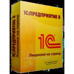 1C:Enterprise 8.3. License for the server