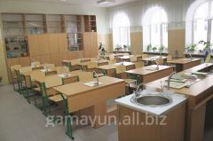 Кабинет химии на 20 учащихся столы с мойкой