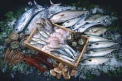 Fish: herring, mackerel, sprat, hake, ridges of a