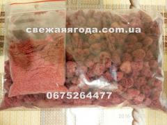 Высушеная ягода малины