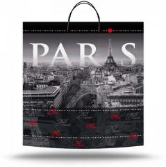Plastic bag with the handle Paris (40х45 cm)