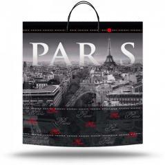 Plastic bag with the handle Paris (40х45 cm)